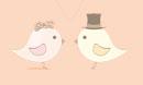 Düğün Mevsimi