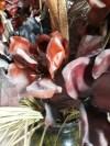Yeşil Seramik Yer Vazosu ve Kuru Çiçekler resmi