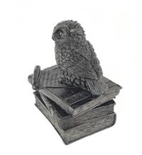Siyah kitap üstü baykuş mini mücevher sandık kode:rss040129 resmi