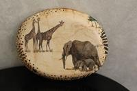 Safari küçük tombak resmi